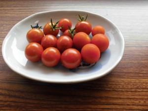 トマト 皿