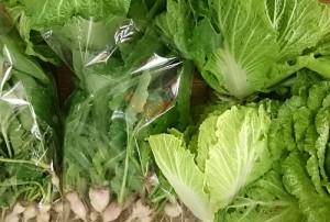 野菜0130