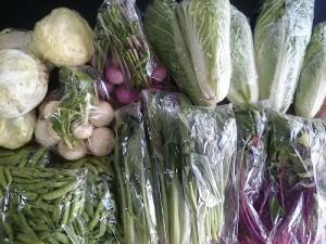野菜0526
