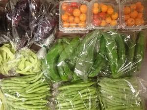 野菜0804
